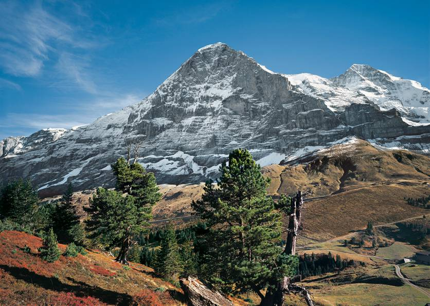 Eiger eiger northface mittellegi ridge ostegg eiger trail the mountain with the biggest north face of the alps reheart Images